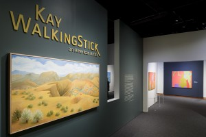 NMAI-DC; Exhibit; Kay WalkingStick; An American Artist; The exhibition was co-curated by NMAI curator Kathleen Ash-Milby (Navajo) and associate director David W. Penney; in collaboration with Kay WalkingStick; Photographed March 03 2016;