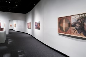 NMAI-DC; Exhibit; Kay WalkingStick; An American Artist; The exhibition was co-curated by NMAI curator Kathleen Ash-Milby (Navajo) and associate director David W. Penney; in collaboration with Kay WalkingStick; Photographed March 03 2016; Photoshop retouching may have been used to eliminate the temporary alarm warning tape strips that were adhered to the carpet on the day the exhibit was photographed;