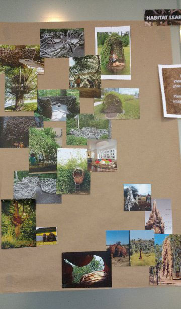 Habitat photo inspiration board