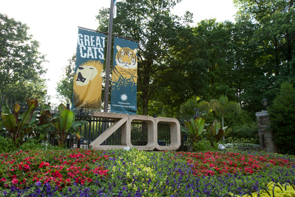 Zoo sign and flower bed at the entrance to Smithsonian's National Zoo