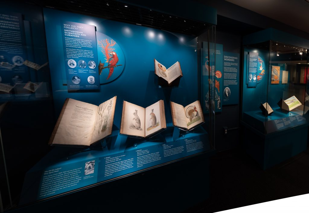 A blue display case contains four open illustrated books. An image of a red parrot and an orange piece of coral are displayed on the case's blue background.