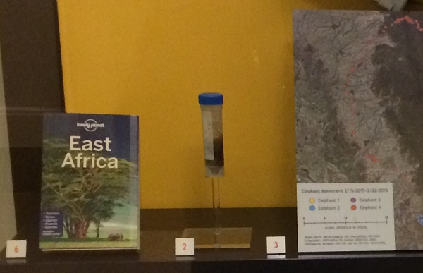 "A small vial with dark material inside it is displayed next to a book titled ""East Africa."""
