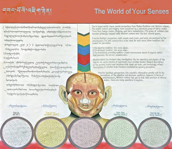 An exhibit intro panel with text in Tibetan and English includes a painting of a human face showing the internal organs.