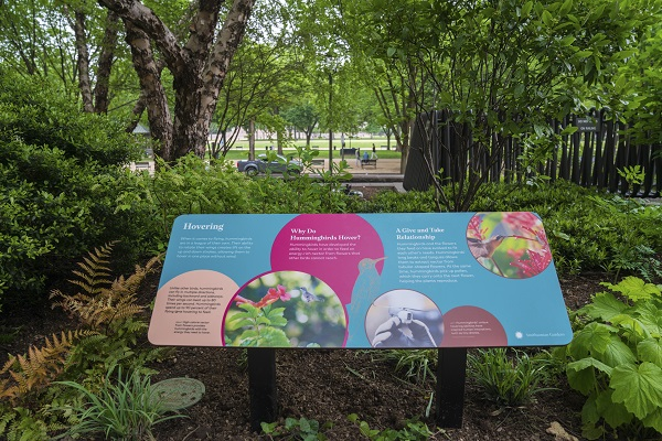 A blue and pink exhibit panel in a wooded area