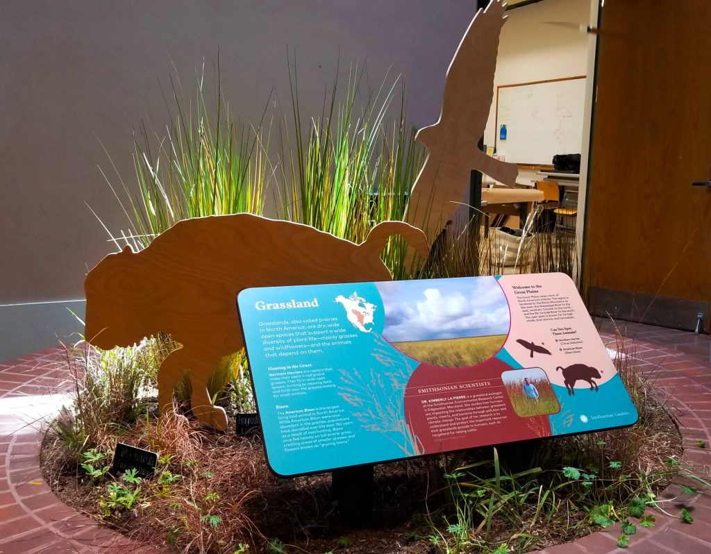 A brick circle containing an exhibit panel surrounded by replicas of plants and animals, including cutouts in the shape of a bison and a bird