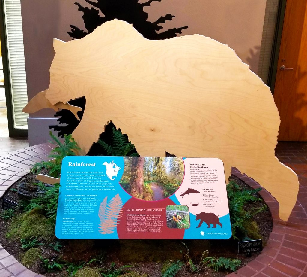 A brick circle containing an exhibit panel surrounded by replicas of plants and animals, including a cutout in the shape of a bear