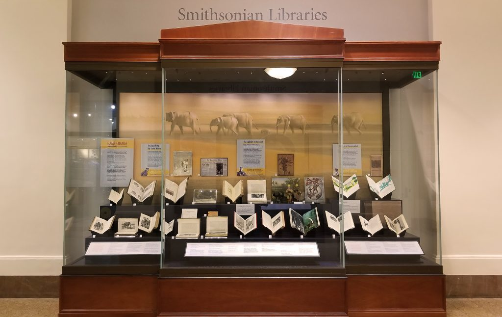 A large display case containing books and other objects