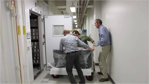 Three men roll a cart from a hallway into a walk-in freezer.